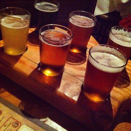 The Terminal Brewhouse: beer sampler