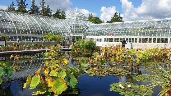 3 picture of new york botanical garden bronx tripadvisor for Bronx botanical garden free admission