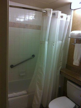DoubleTree Suites by Hilton Hotel Phoenix: Tub Area