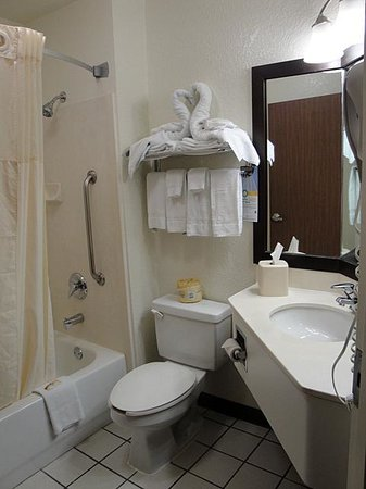 Quality Inn & Suites Denver International Airport: the bathroom of room 433