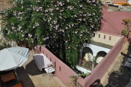 Riad Kalila: terrasse fleurie 1