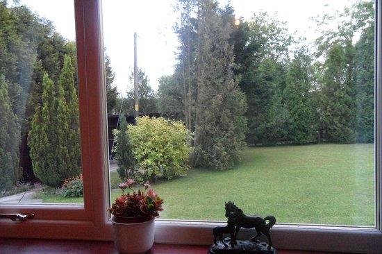 Corrie Glen Bed & Breakfast: Vue de la chambre sur les boxes