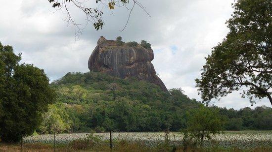 Sigiriya Village Hotel: Lion Rock