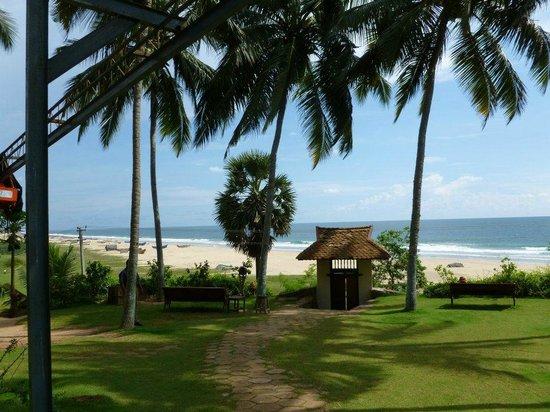 Somatheeram Ayurvedic Health Resort: View from room - simply stunning