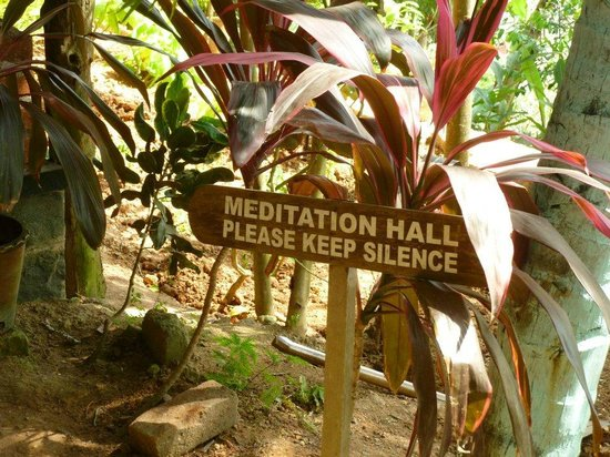 Somatheeram Ayurvedic Health Resort: Peaceful :)