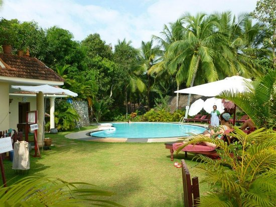 Somatheeram Ayurvedic Health Resort: Pool area - very clean