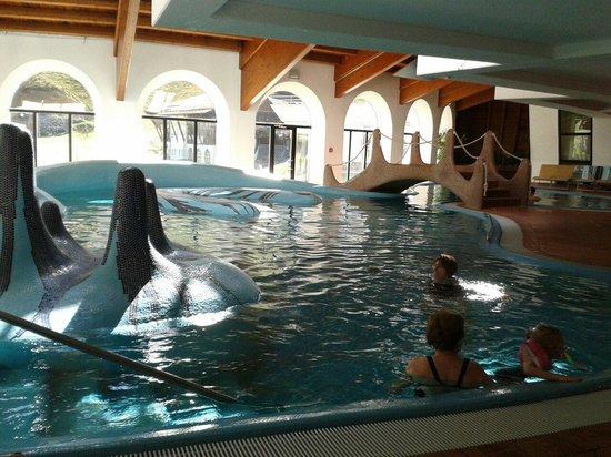 Romerbad Thermal Spa: Parte della piscina interna