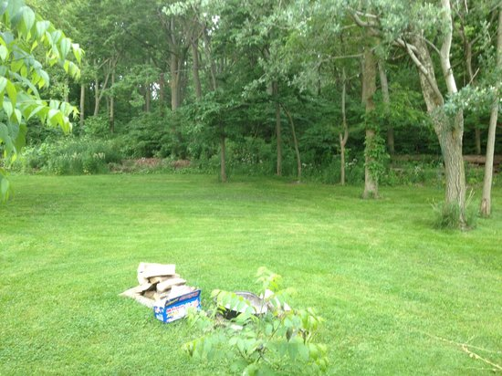 Pelee Places: Back yard