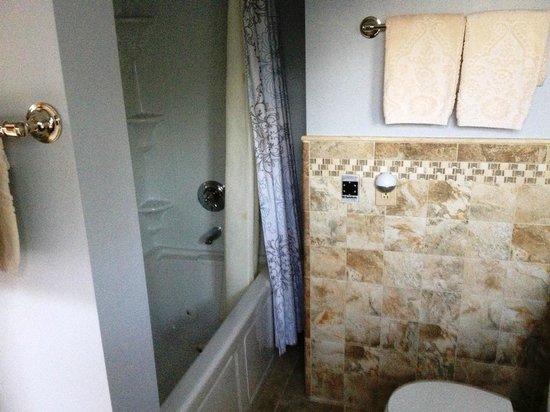 Inn at Bay Ledge : Room 8 Bathroom (whirlpool tub)
