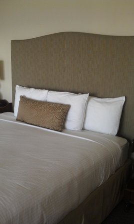 Shearwater Inn: King bed