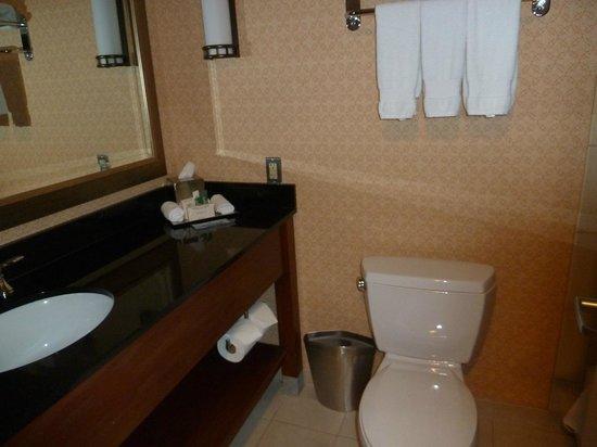 Hilton Chicago O'Hare Airport: Bathroom