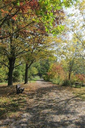 Toogood Pond Park : Untitled