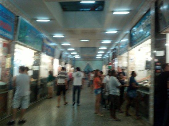 Mercado São Pedro: mercado onde são vendidos os peixes