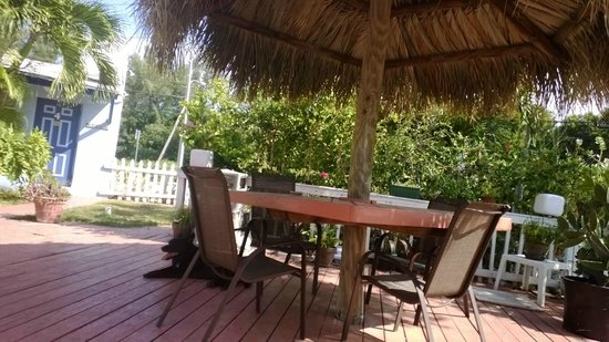 Conch on Inn Motel: Ansel digs their new tiki huts