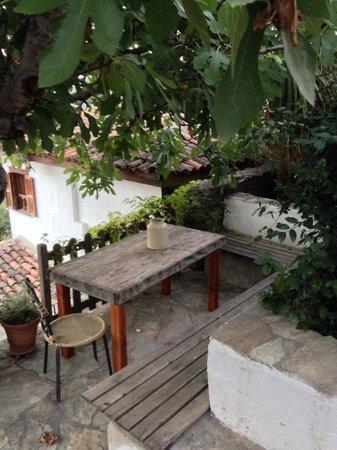 Terrace Houses Sirince: Fig House Terrace