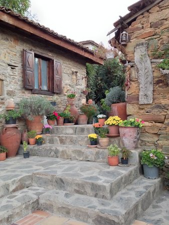 Terras Evler - Terrace Houses Sirince: Cafe/Olive House