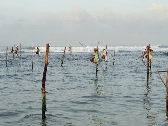 Club Koggala Village: pêcheurs à proximité de l'hôtel