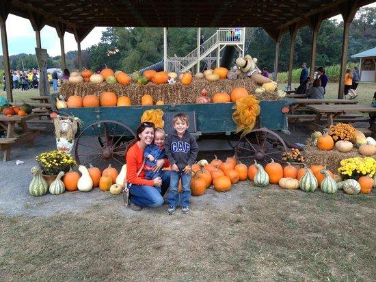 Kyker Farms Corn Maze: family fun!