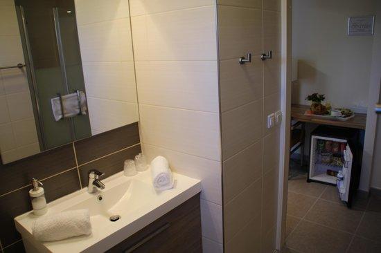 Hotel Occitan: Salle de douche