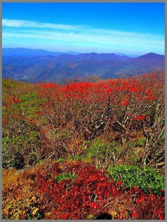 Big Ridge Nature Center North Carolina