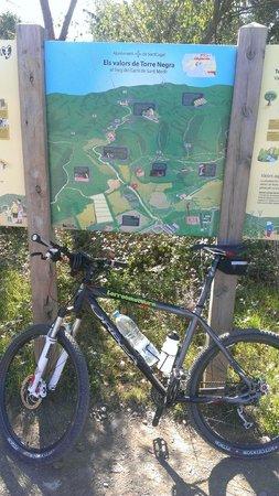 Terra BikeTours - Private Day Tours: MTB