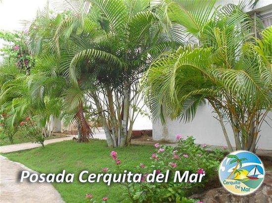Posada Cerquita Del Mar: Áreas Verdes