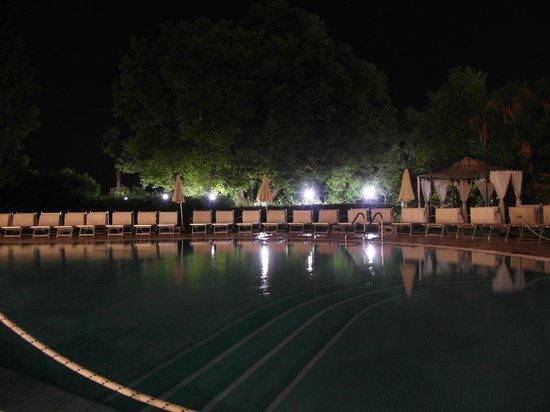 Hotel Savoy Palace: The pool at night
