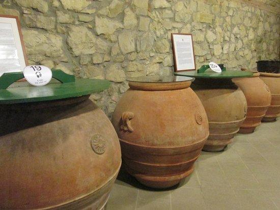 Museo Vino   Wine Museum