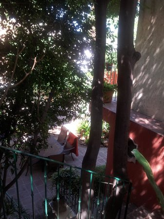 Casa Tuscany Inn : Shady courtyard