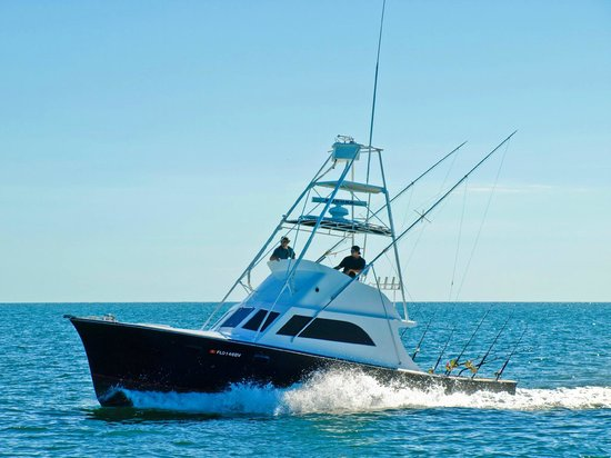 Ocean Energy Sport Fishing - Private Charters
