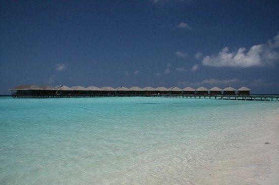 Filitheyo Island Resort: filitheyo Island
