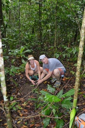 Lapa Rios Ecolodge Osa Peninsula: Us planting a tree in the primary rain forest
