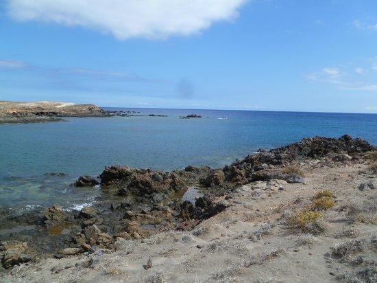 Blue Explorers Tenerife : Where it all took place