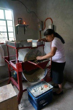 La Villa Bonita Culinary Vacation: Making the fresh masa for our tamales