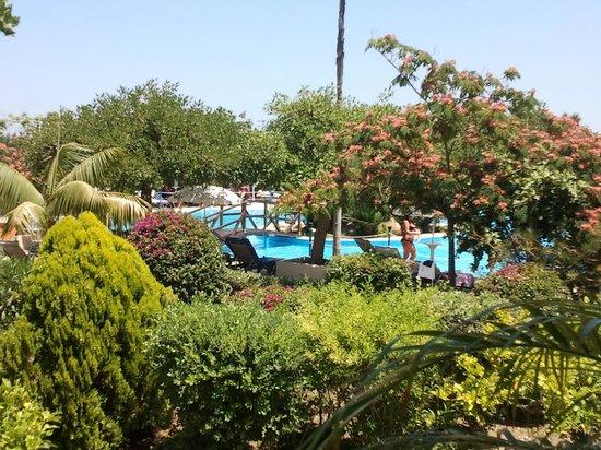 Fiesta Hotel Athènee Palace: piscine/ jardin