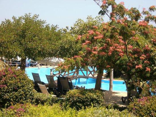 Fiesta Hotel Athènee Palace: piscine
