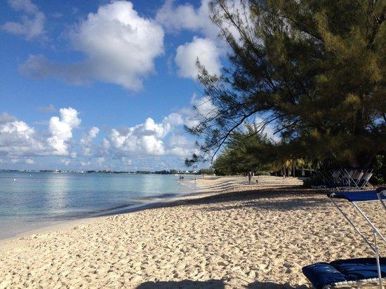 Grand Cayman Beach Suites: Beach