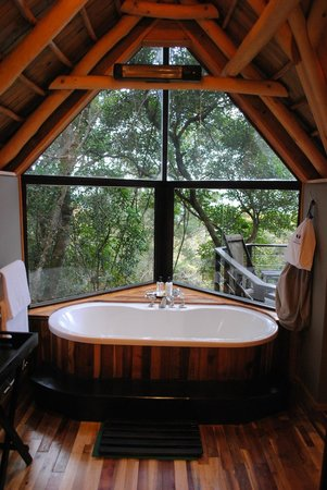 The Phantom Forest Eco-Reserve: Bath with a view