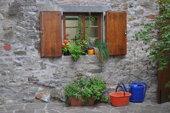 Fattoria Poggerino: A stone wall, plants and buckets - simple but attractive.