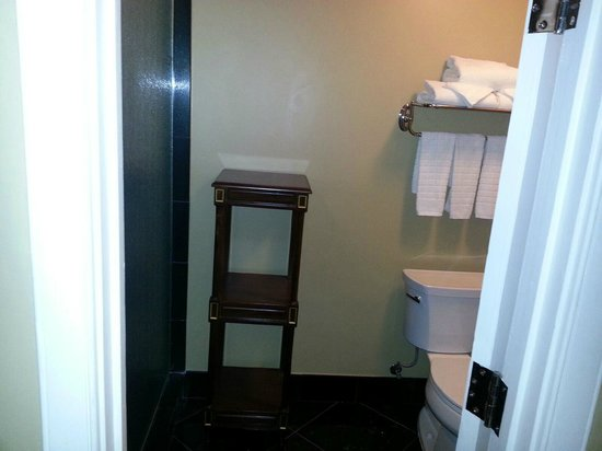 Hotel Mazarin: Dumb Shower Set Up