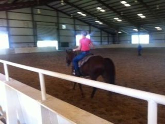 The Inn at Dos Brisas: horse riding lesson