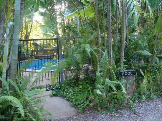 Rum Jungle Bungalows: paradise accommodations with pool that even more secluded