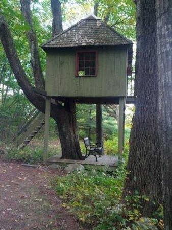 Brimfield, MA: The tree house