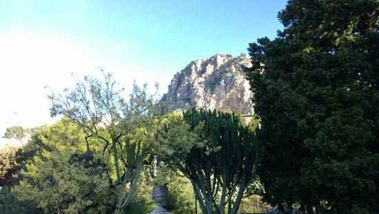 Villa Caterina: Blick durch den Garten auf den Hausberg von Cefalu