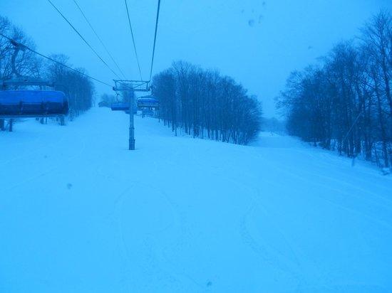 Mount Snow Resort: BLUEBIRD