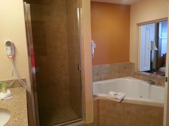Floridays Resort: Master bath