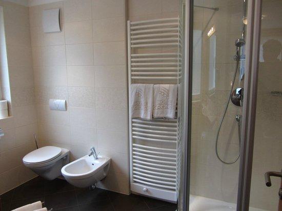 Hotel Grones : Bathroom, room 109