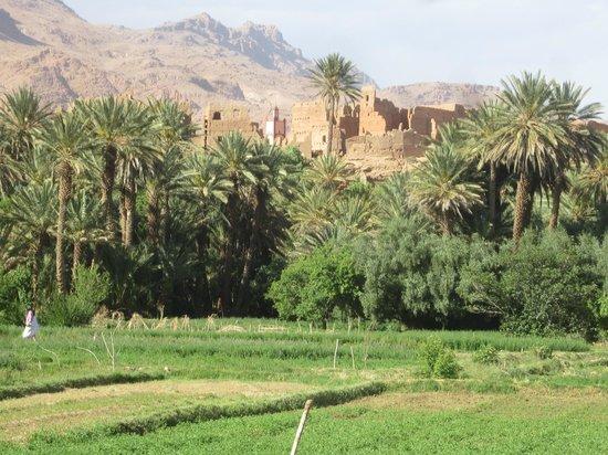 La Maisonnette : Villag ede Tinghir et la palmeraie