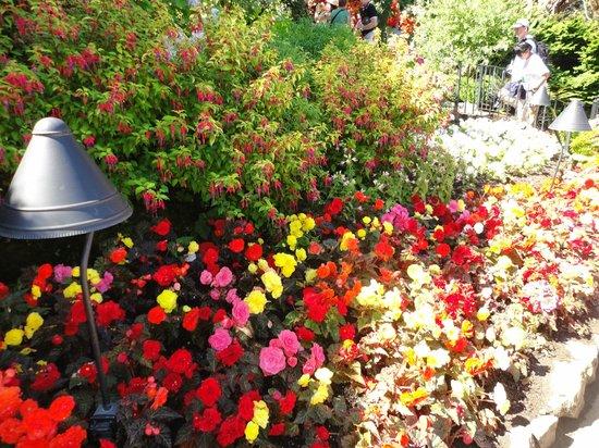 Butchart Gardens: jb1