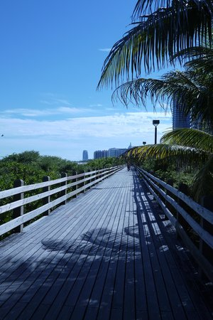 Hotel Riu Plaza Miami Beach : Boardwalk all the way to Ocean Drive
